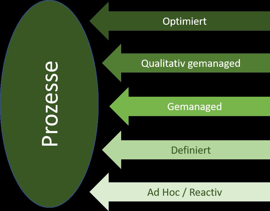 Maturity Prozesse